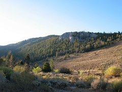 Rock Climbing Photo: Limestone crag near Timber Creek CG, Ely
