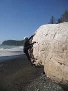 Rock Climbing Photo: Driftwooding near Mora. Bring tweezers (not pads)....