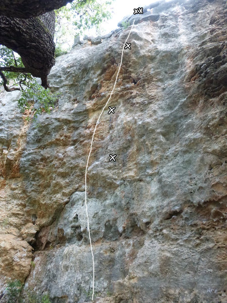 Rock Climbing Photo: Rhetoric Bolt Line