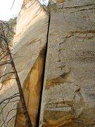 Rock Climbing Photo: The Ultimator