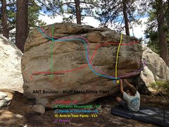 Ant Boulder Topo