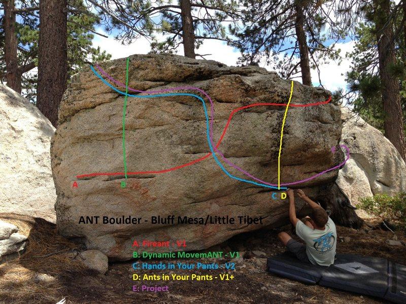 Rock Climbing Photo: Ant Boulder Topo