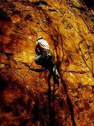 Rock Climbing Photo: Fisheyed fool 10b foster falls