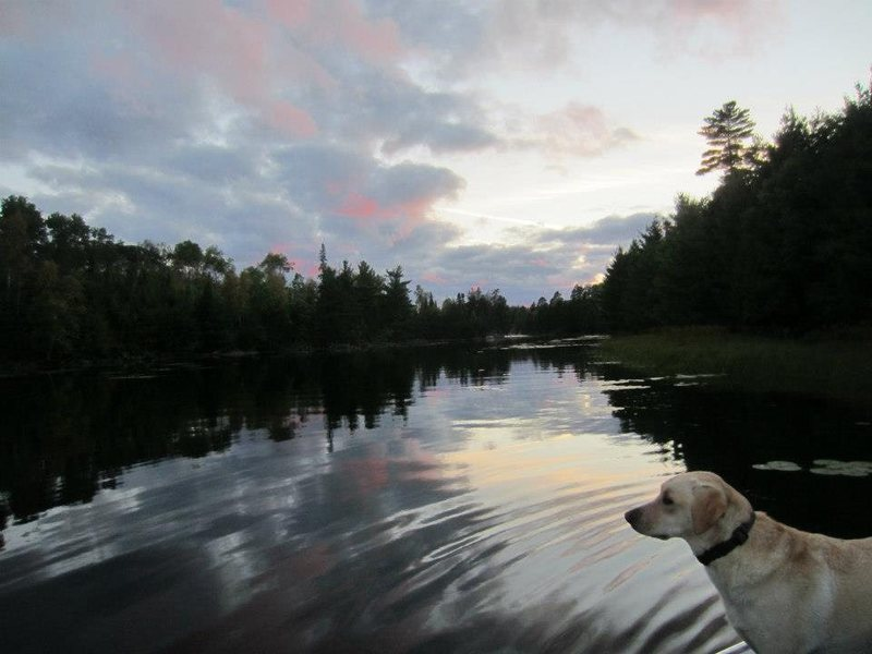 On our way back to the cabin, Pele reflects on the day.