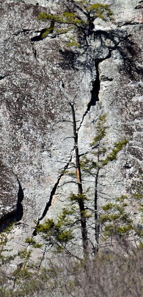 Rock Climbing Photo: Unrelenting Verticality