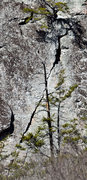 Rock Climbing Photo: Unrelenting Verticality