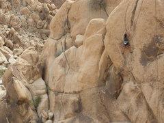 Rock Climbing Photo: Becca Corbin on Gozer the Gozarian.
