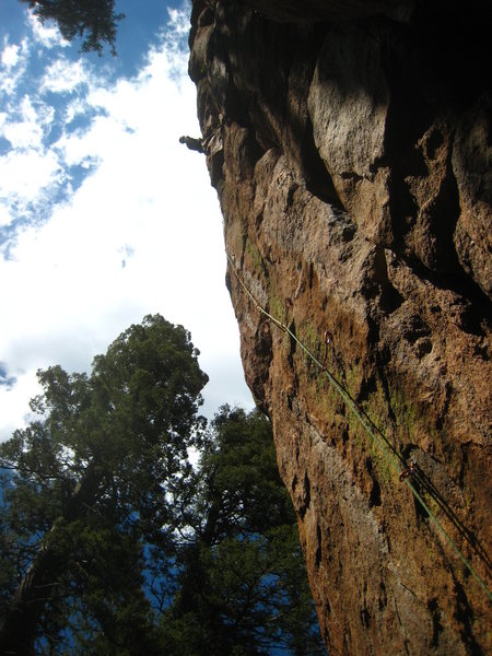 "Rock Climbing Photo: Working a ""Mega"" classic."