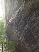 Rock Climbing Photo: Scar Tissue 12a RRG July 2013