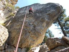 Rock Climbing Photo: Robin