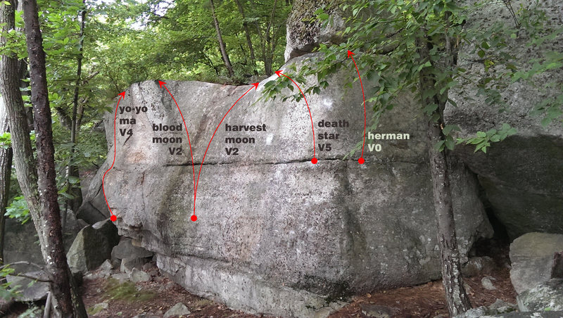 Problems on the Herman Boulder