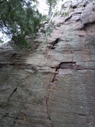 Rock Climbing Photo: Big Deal TR
