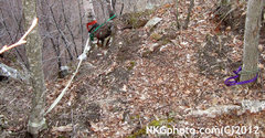 Rock Climbing Photo: slings suck