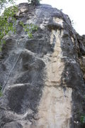 "Rock Climbing Photo: 4 bolts up the right side.  Draws are on ""Hob..."