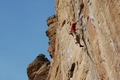 Rock Climbing Photo: Taking the whip on Cool Ranch Flavor!