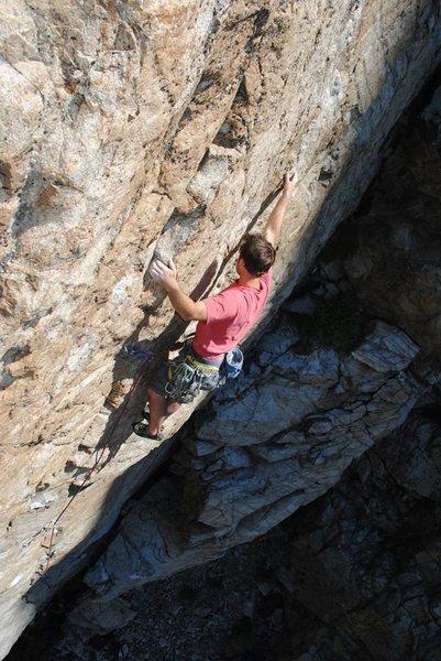Rock Climbing Photo: Borden on Bush League