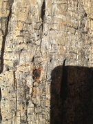 Rock Climbing Photo: The chopped bolt from the tree that used to be in ...