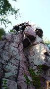 Rock Climbing Photo: Fuzzy clipping gear.
