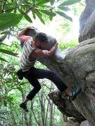 "Rock Climbing Photo: Aaron James Parlier on the FA of ""Plastron Ga..."