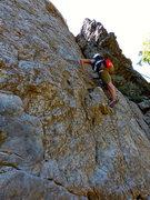 Rock Climbing Photo: dogwood