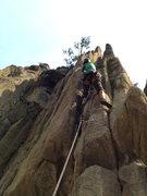 Rock Climbing Photo: Anniversary crack