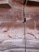 Rock Climbing Photo: deep water solo, San Juan River Arm