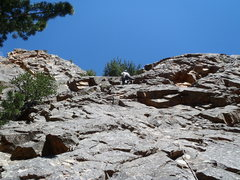 Rock Climbing Photo: First pitch of Astro Zombies.