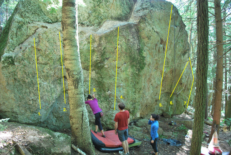 Topo of Yellowjacket Boulder:<br> <br> 1. Little One<br> 2. Cavaletti (behind tree)<br> 3. Rock Shop<br> 4. Trillium and variations<br> 5. The Big Short<br> 6. Short Sale<br> 7. The Bottom Falls Out