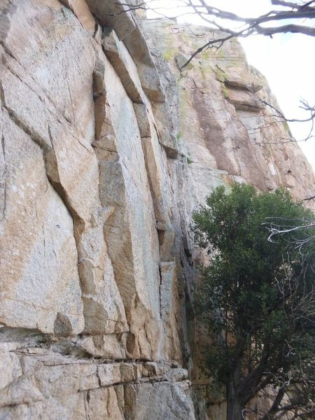 Rock Climbing Photo: The start, next to the tree and above the obvious ...
