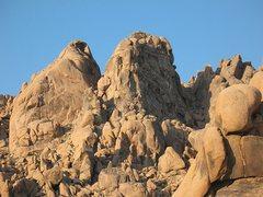 Rock Climbing Photo: Margheritaville skyline, High Desert