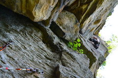 Rock Climbing Photo: View of the trad follower from the top of the firs...