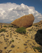Rock Climbing Photo: The Cling-On Boulder.  This is the huge boulder yo...