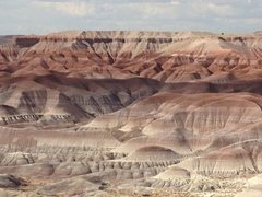 Rock Climbing Photo: Painted desert AZ