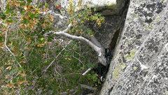 Rock Climbing Photo: rap rings at top of p1