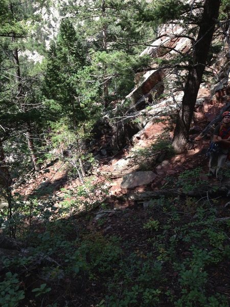 Looking down from the landing zone. At least 15m of trail/steps would need to be improved.