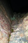 Rock Climbing Photo: Looking into the darkness from the belay ledge ato...