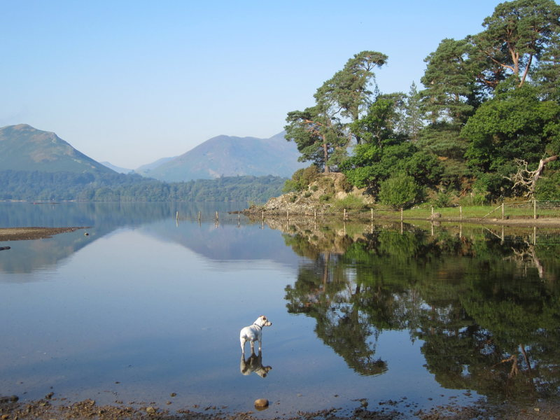 More reflections in Derwentwater Lake near Keswick