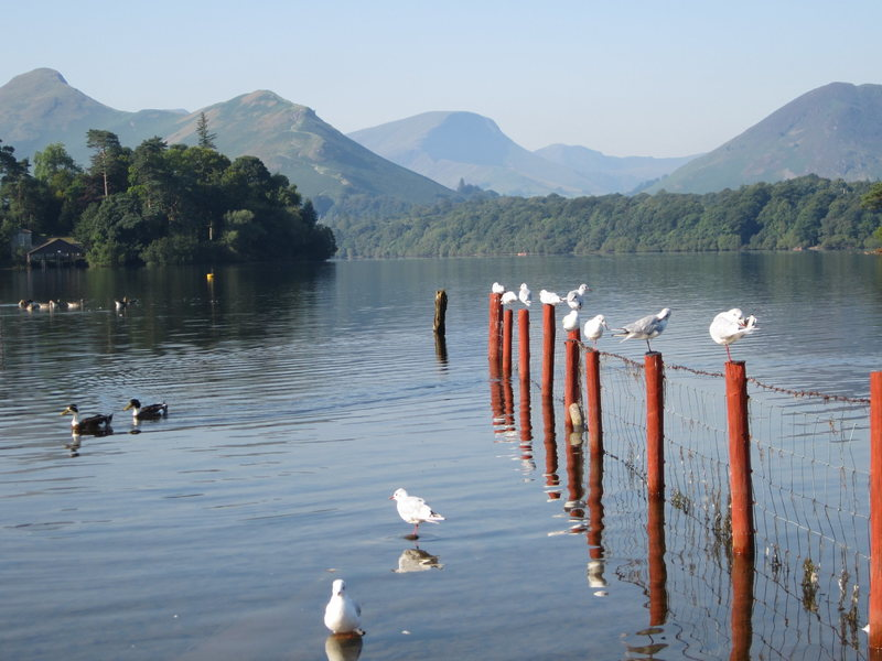 Rock Climbing Photo: Derwentwater.... Morning reflections August 26th 2...