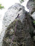 Rock Climbing Photo: Fanny climbing past the first bolt.