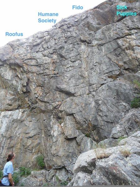 Rock Climbing Photo: Humane Society Wall