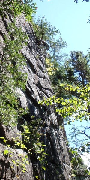 John Hoffmann hanging from the belay tree on Lichenbrau's first pitch.  A route to recommend somewhat reminiscent of Shawangunk face climbs like Yellow Ridge. - photo John Ely