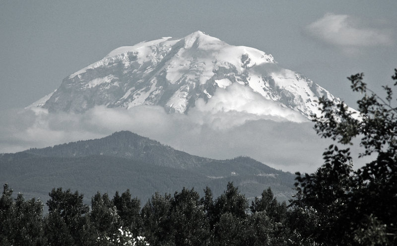 Rock Climbing Photo: Rainier from the northwest