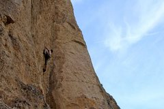 Rock Climbing Photo: Mufassa