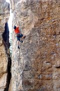 Rock Climbing Photo: at the French cattle ranch