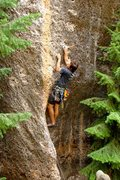 Rock Climbing Photo: cruxy start of fun stripe
