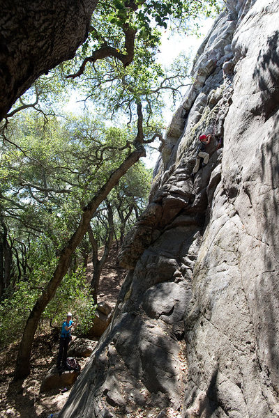 Bryson Fienup (at 6 years old) climbs Dirty Rat's Crack, at Bishop Peak.