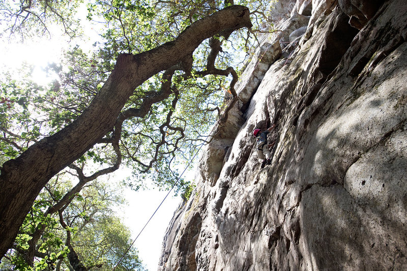 Bryson Fienup (age 6 in this photo) climbs through the Guide's Area, at Bishop Peak.
