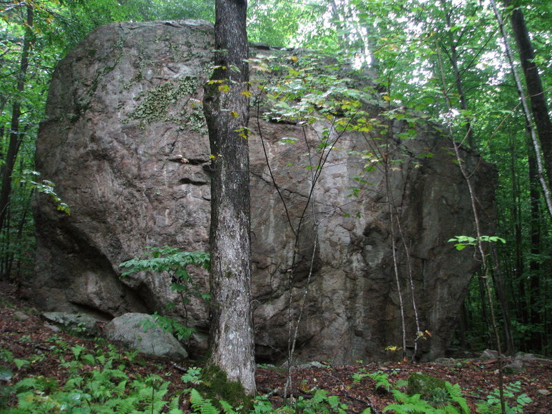 20 foot tall beauty, one of the Sugar Maple Grove boulders, an impressive collection of quality boulders up to 40 feet tall below Hart's Ledge in Bartlett.<br> Handren's guide lists the crack towards the right side as a 3 out of 3 star V7 (no name given). Access is very easy, 15 minutes along a mellow logging road