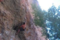 Rock Climbing Photo: Cool staying cool.