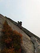 Rock Climbing Photo: Adam starting up P12